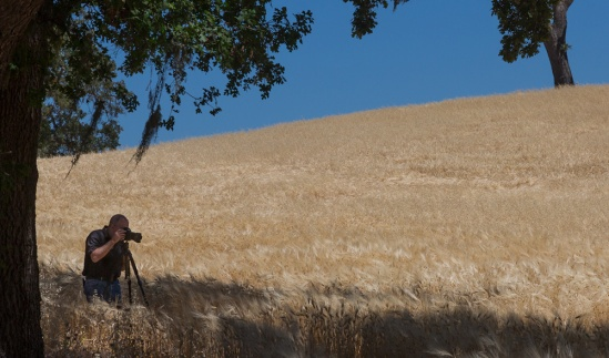 David Saffir, shooting in Paso Robles CA, earlier this year